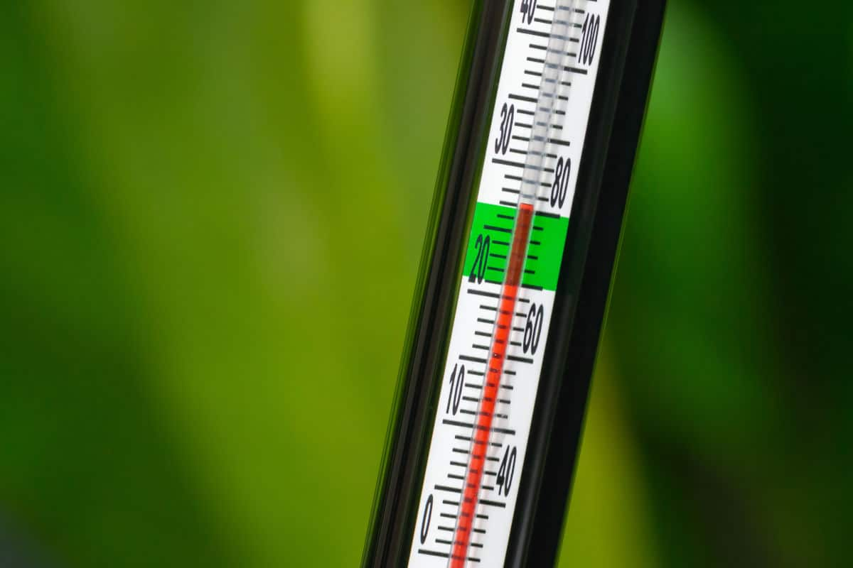 A mercury style aquarium thermometer with a green stripe for correct temp